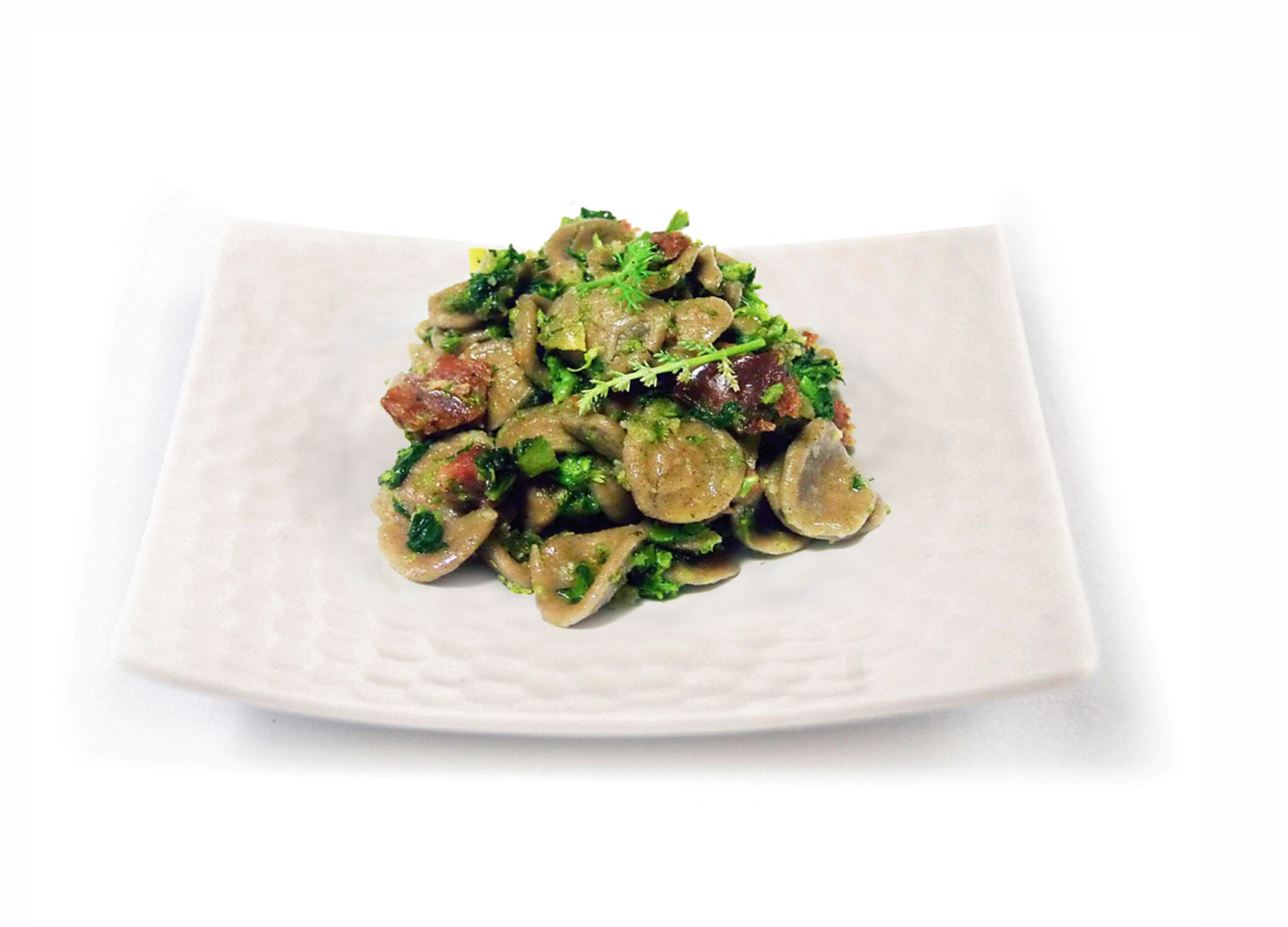 Toasted wheat orecchiette